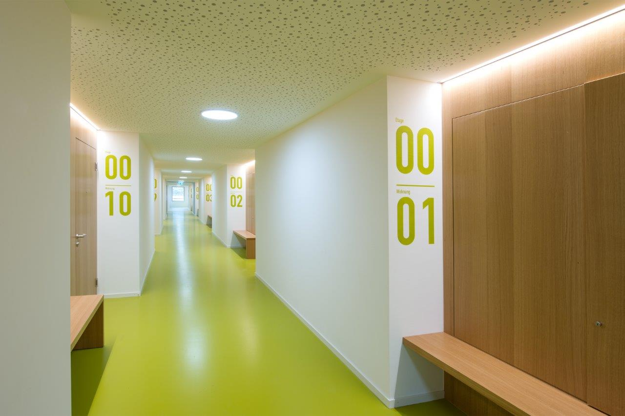 Massiv und teilweise verkleidet: Wände aus bekleideten BSP-Platten in der Alterssiedlung Reutenen Frauenfeld l Krattiger Holzbau AG Amriswil